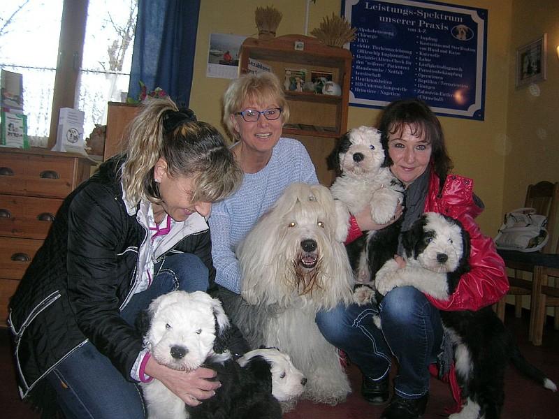 DSCN4876gruppe-mit-hunden